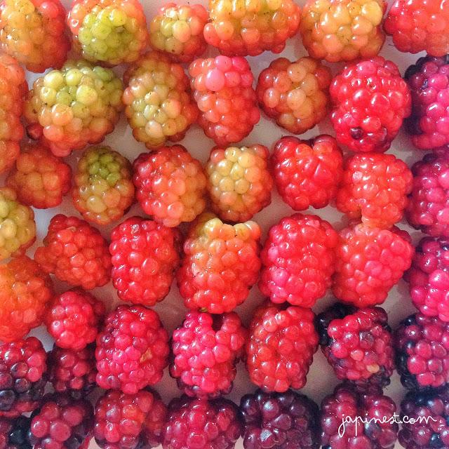 Berry Happy! #TGIF